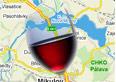 Putování za vínem na jižní Moravu. Ale kam?